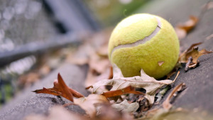 257707_tennisnyj-myach_-myach_-listya_-osen_-nastroenie__1920x1080_(www_GdeFon_ru)
